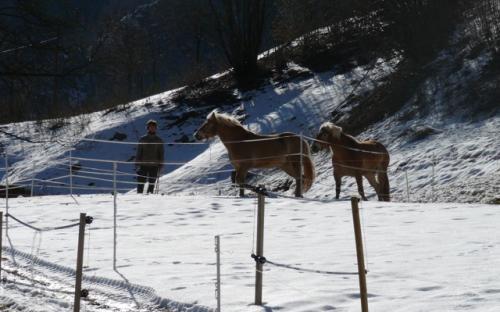 movimento invernale